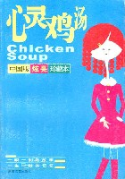 心灵鸡汤(中国版炫亮珍藏本)