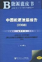 中國能源發展報告(2008)