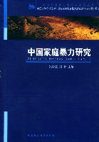 中國家庭暴力研究/反對家庭暴力理論與實踐叢書
