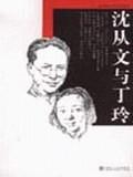 沈从文与丁玲/李辉传记作品系列