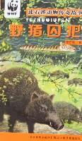 沈石溪动物传奇故事-野猪囚犯
