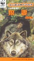 沈石溪动物传奇故事-狼妻