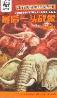 沈石溪动物传奇故事-最后一头战象
