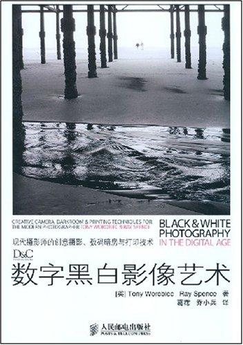 数字黑白影像艺术