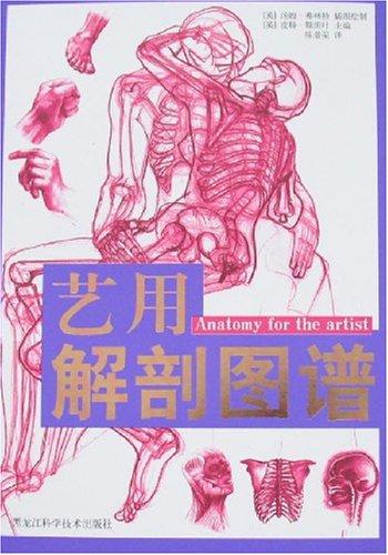 藝用解剖圖譜