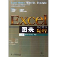 EXCEL图表实战技巧精粹(附CD光盘1张)