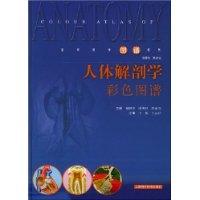 人體解剖學彩色圖譜(精裝)(柏樹令)封面圖片