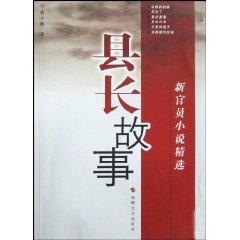 县长故事(新官员小说精选)