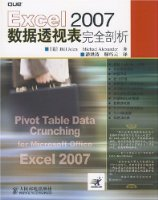 Excel 2007數據透視表完全剖析