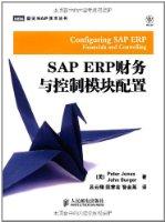SAP ERP财務與控制模塊配置