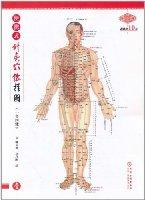 便攜式針灸穴位挂圖(1套4張)
