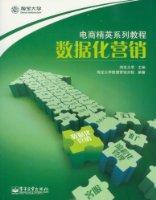 电商精英系列教程:数据化营销(全彩)