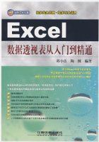 Excel数据透视表从入门到精通(附光盘1张)