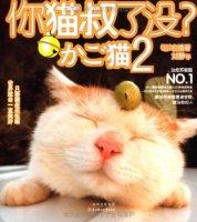 """你猫叔了没?(2)(宽幕3D海报别册+3D减压眼镜+""""猫叔同萌""""钱包卡)"""