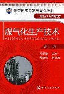 煤氣化生産技術(第2版)