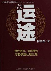 大型长篇连续系列小说:运途