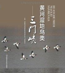 黄河湿地鸟类:三门峡