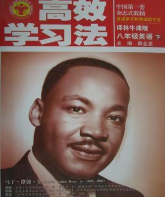 中国第一套杂志式教辅·高效学习法·英语(八年级下)