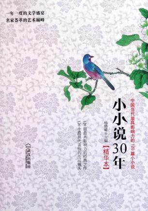 小小说30年精华本