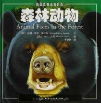 我能读懂动物的脸:森林动物