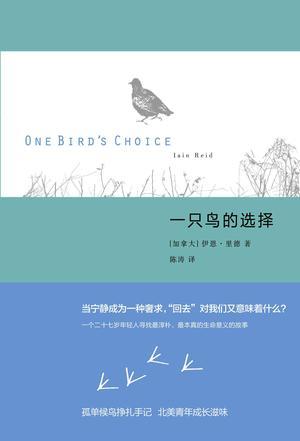 一只鸟的选择
