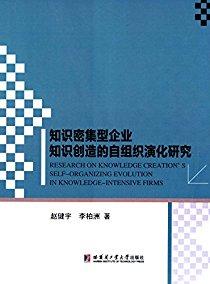 知识密集型企业知识创造的自组织演化研究