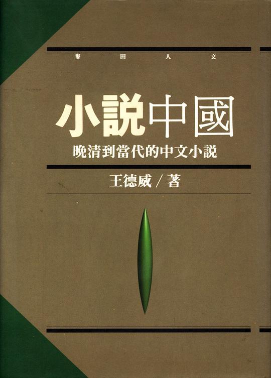 小說中國:晚清到當代的中文小說